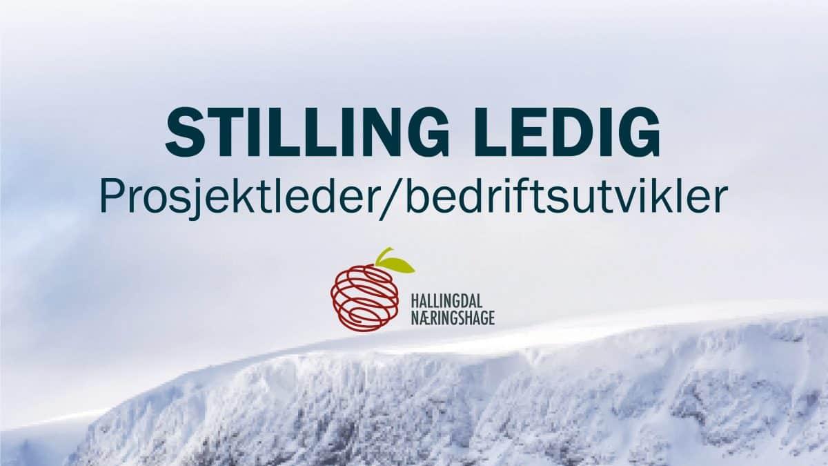 Stilling ledig HNH