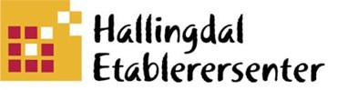 Hallingdal Etablerersenter AS