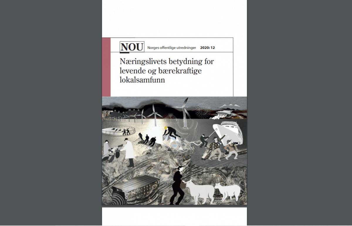 skjermdump rapport